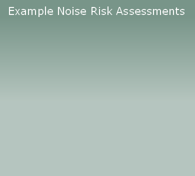 Example Noise Risk Assessments